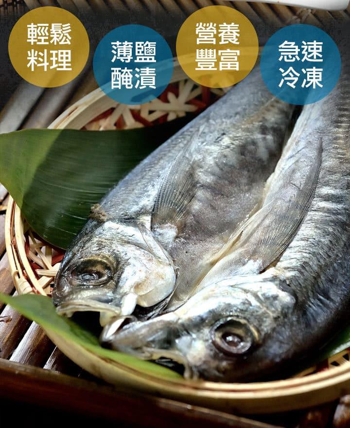 黃金竹筴魚一夜干