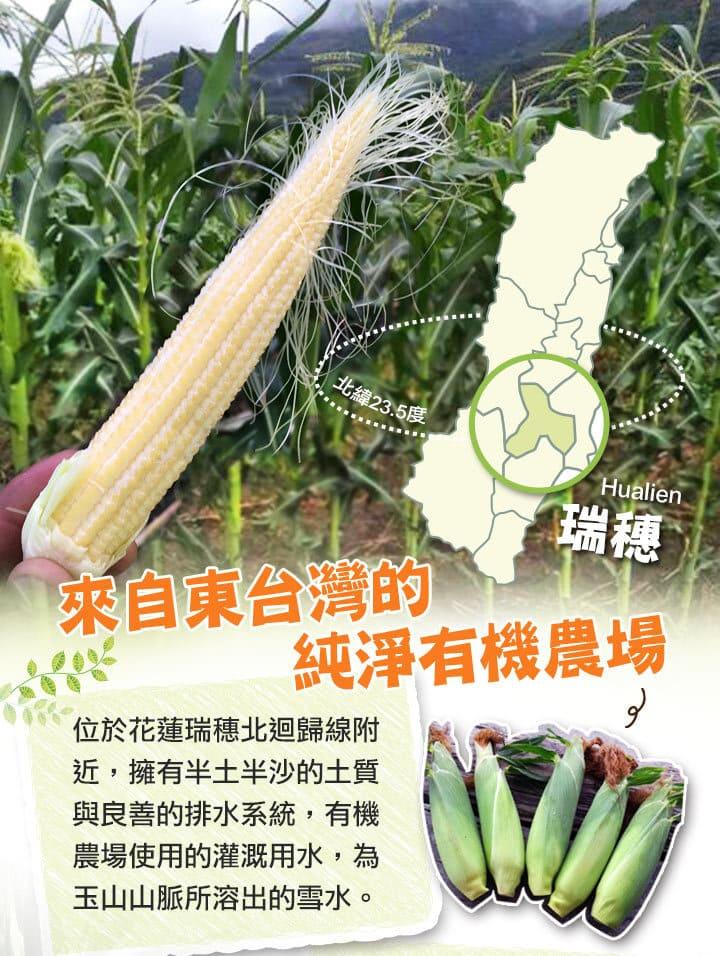 小巨人有機玉米筍