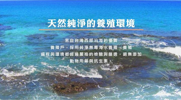 台灣活力白蝦_愛上鮮比臉還要大的牛排