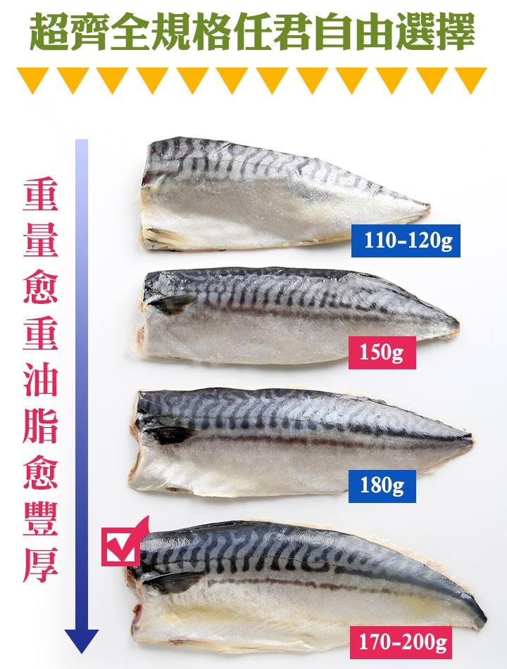 老饕挪威薄鹽鯖魚170-200