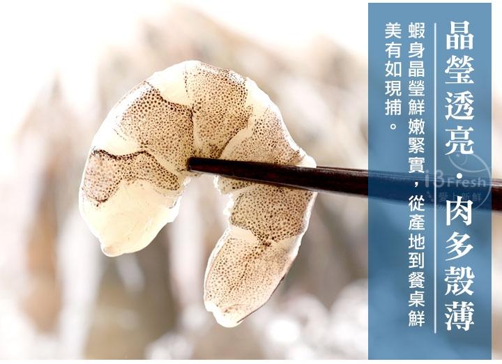 台灣極鮮白蝦