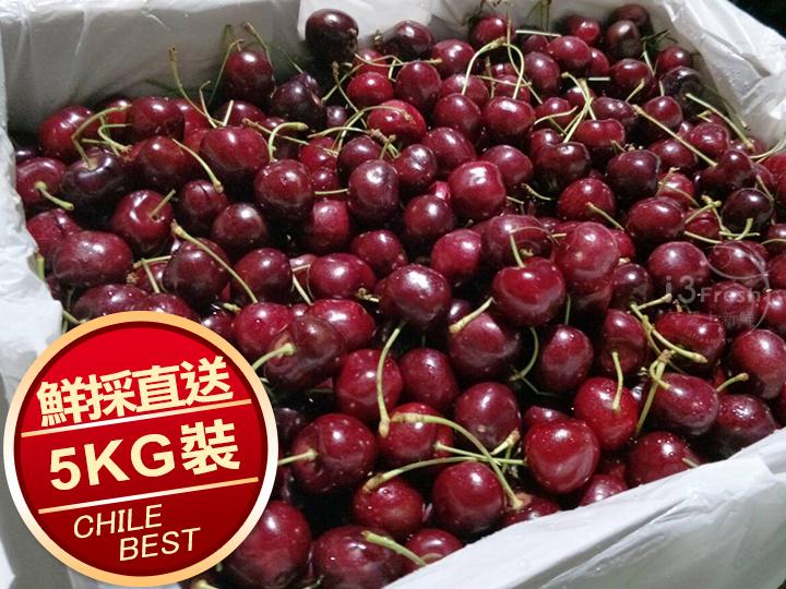 特選智利鮮採櫻桃(5KG/箱)