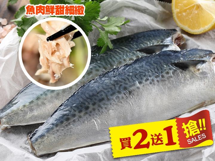 快閃❤健康無鹽鯖魚