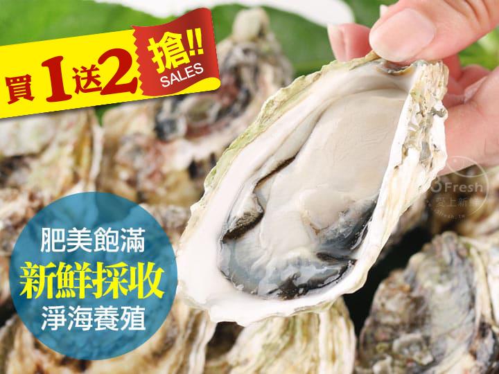 現撈澎湖牡蠣(買一送二)