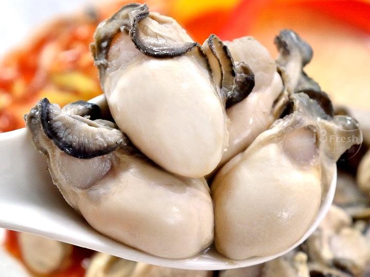 澎湖國王牡蠣