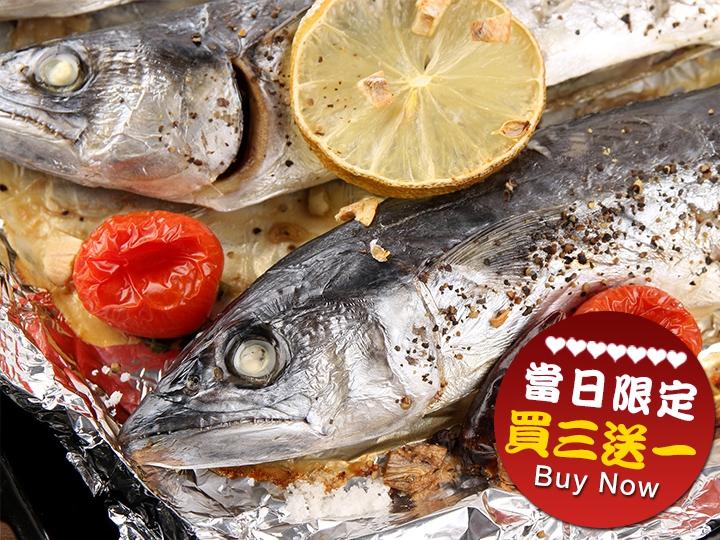 快閃優惠❤野生馬加魚