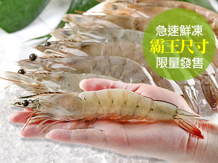 台灣活凍霸王白蝦