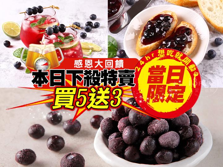 【特賣】鮮凍國王大藍莓