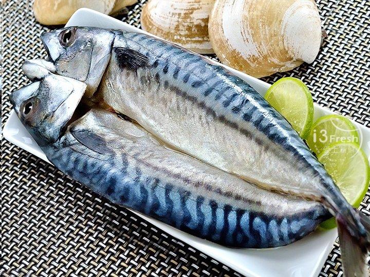 挪威整尾鯖魚290g
