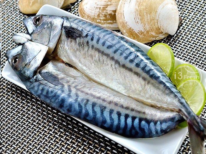 挪威整尾鯖魚200-220g