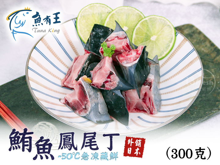 魚有王鮪魚鳳尾丁