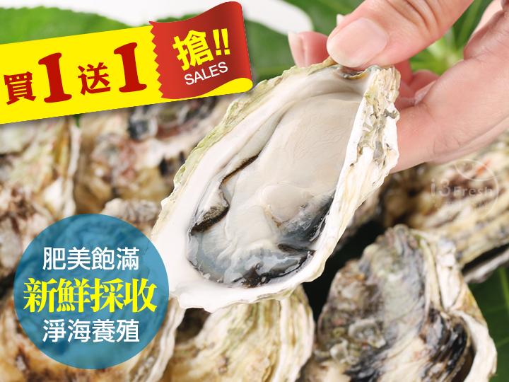 頂級澎湖帶殼牡蠣