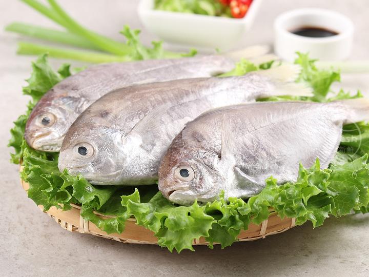 鮮凍野生肉魚