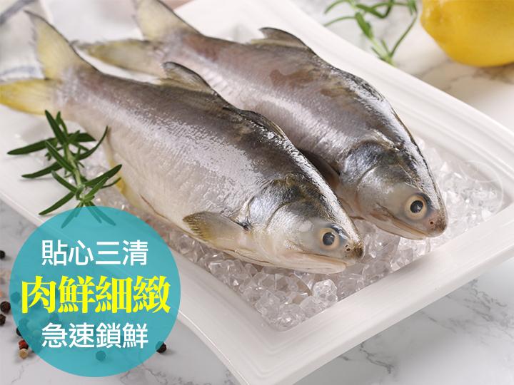 台灣優鮮午仔魚