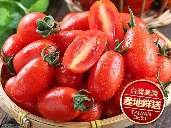 美濃鮮採玉女小蕃茄