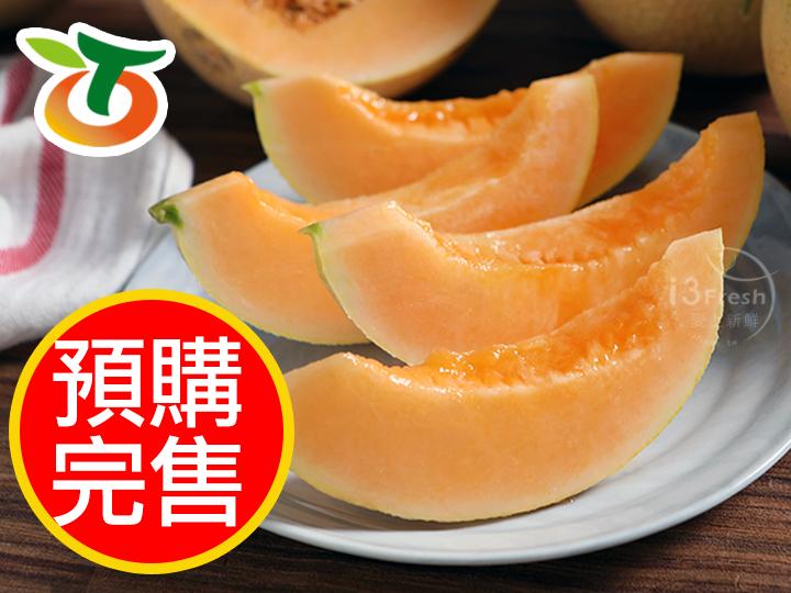 台南網紋紅肉哈蜜瓜