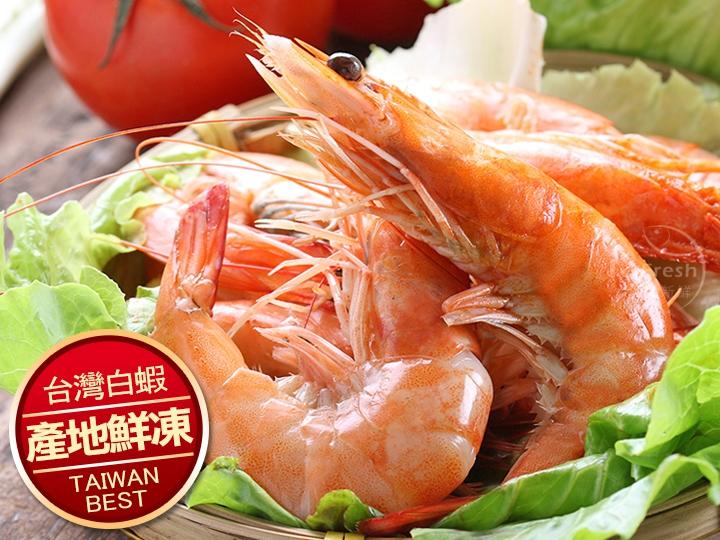 台灣巨無霸白蝦