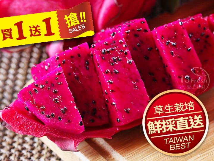 特級草生紅肉火龍果