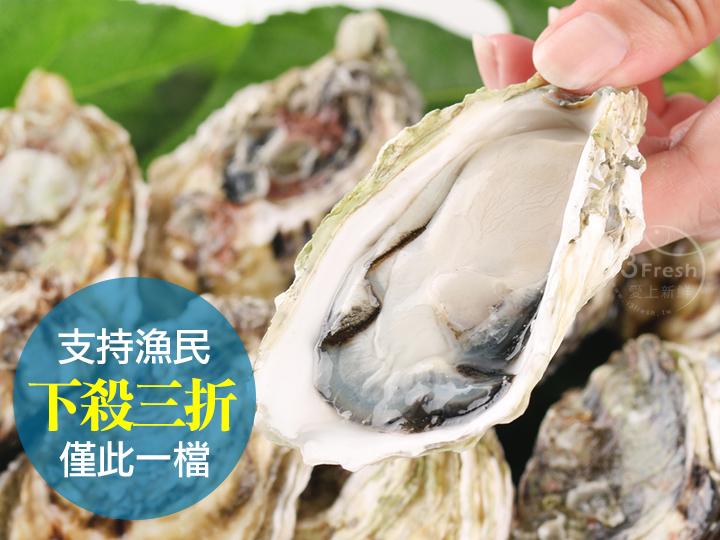 現撈澎湖帶殼牡蠣
